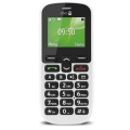 Big Button Mobiles and Accessible Smart Phones